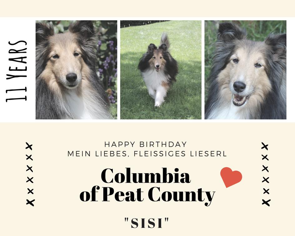 Happy Birthday – unsere C-linge
