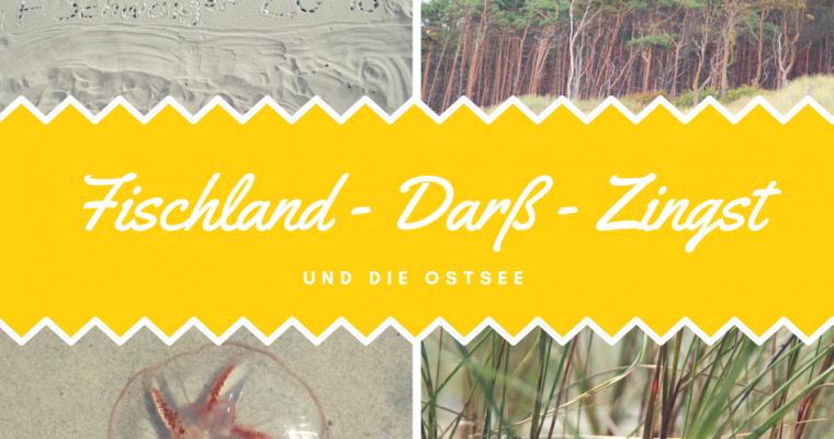 Fischland – Darß – Zingst – unser Urlaub an der Ostsee