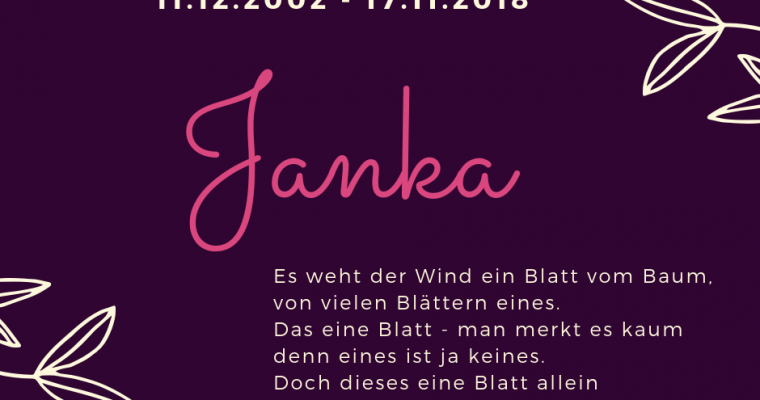 RUN FREE Janka´le