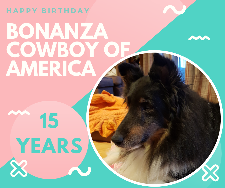 Happy Birthday Cowboy