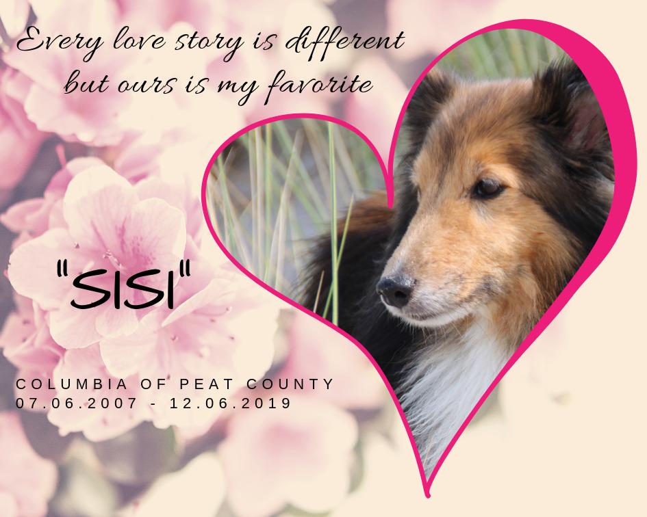 Sisi – mein großes liebes Mädchen