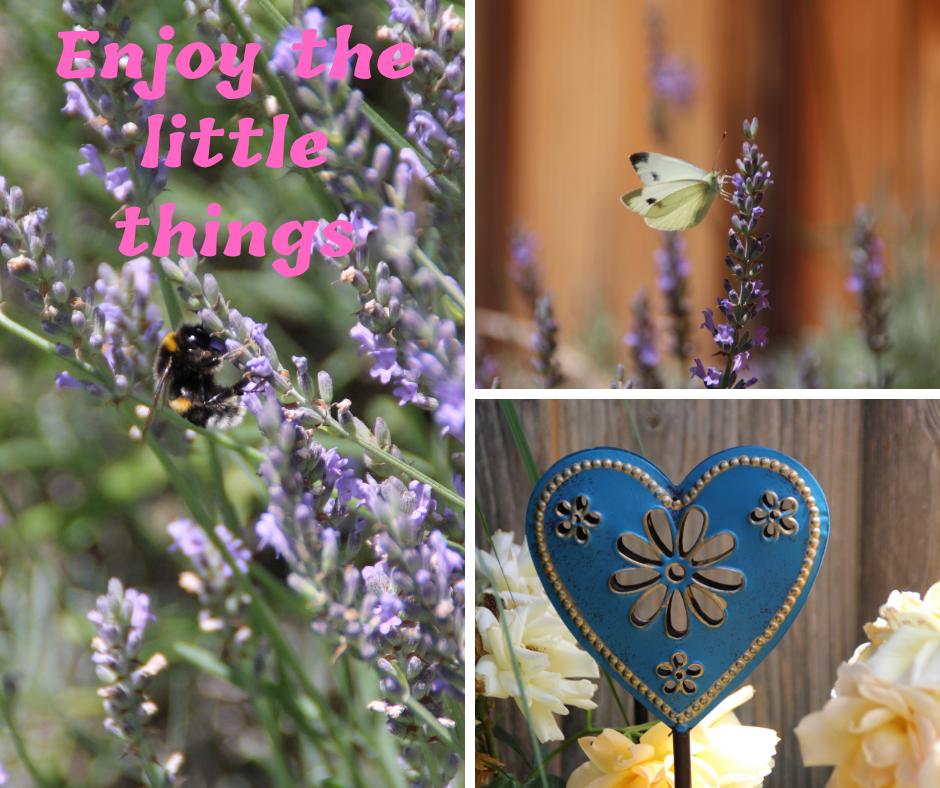 Die kleinen Dinge des Lebens …