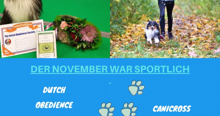 Der November war sportlich